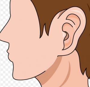 中耳炎 大人 子供